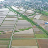 鹿児島3号六月田地区工事用道路整備工事